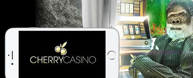 cherry-casino-mobile_header